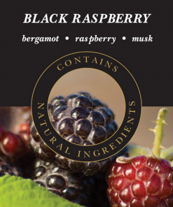 ashleigh-burwood-black-raspberry