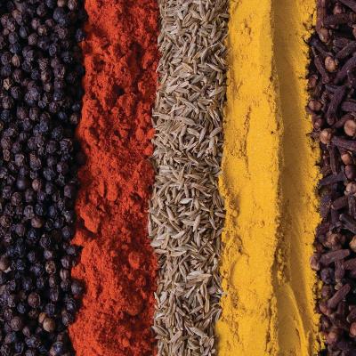ashleigh-burwood-moroccan-spice-geurlamp