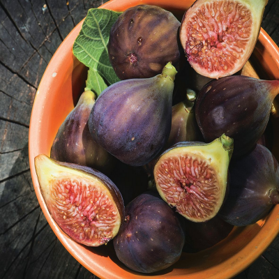 ashleigh-burwood-roasted-fig-geurlamp